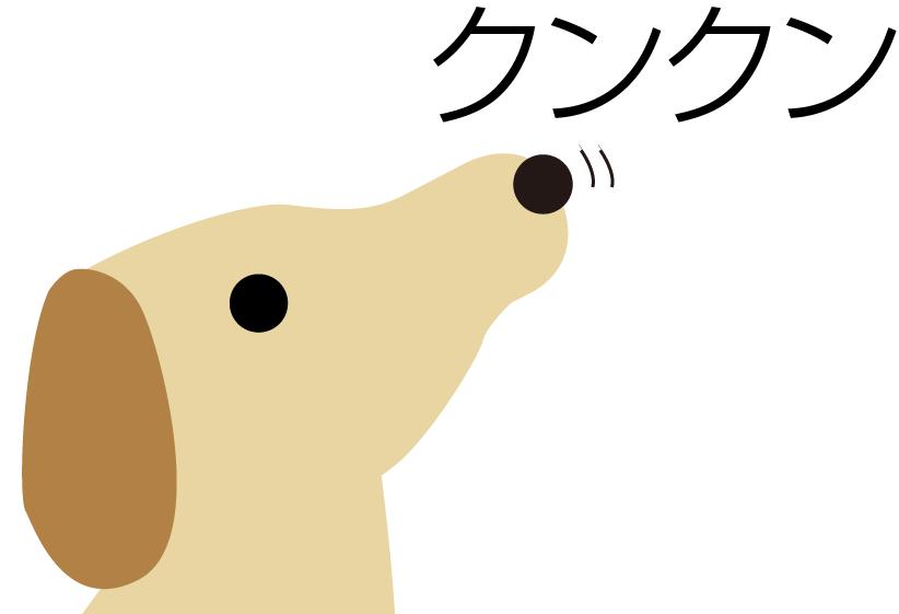 201602_kunkun