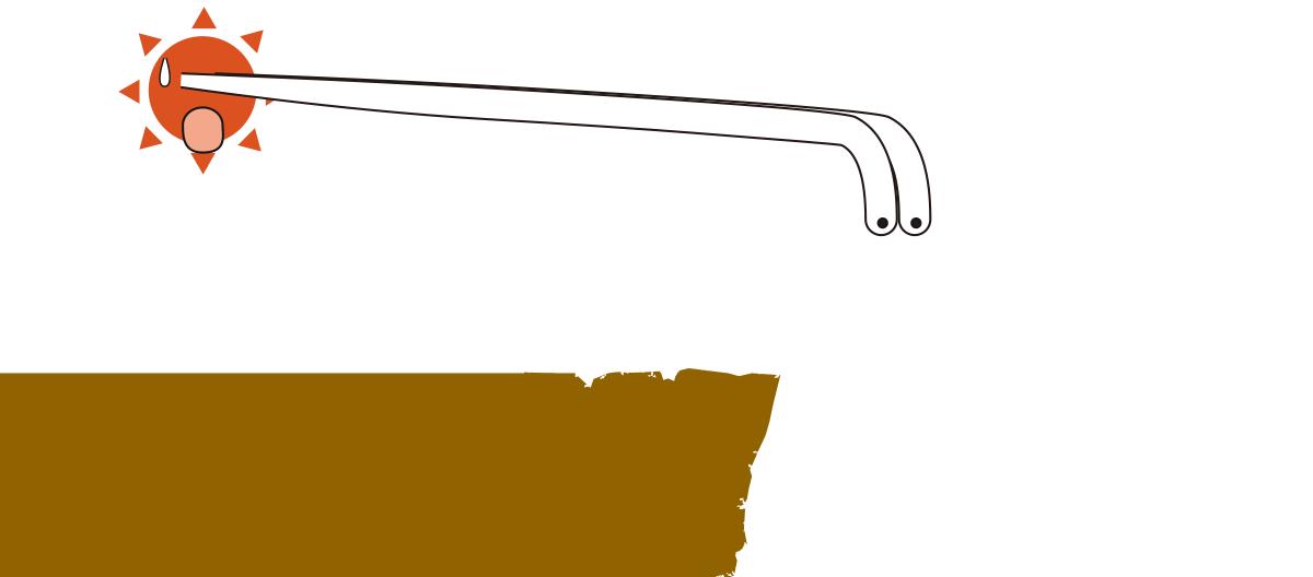 07201603-wani